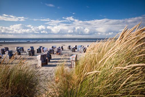 Timothy Grass「Wicker beach chairs」:スマホ壁紙(9)