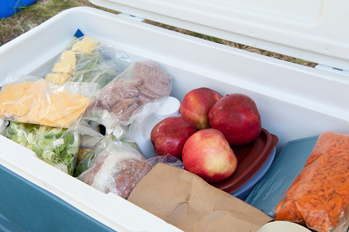 Portability「Blue igloo cooler, filled with picnic food」:スマホ壁紙(19)
