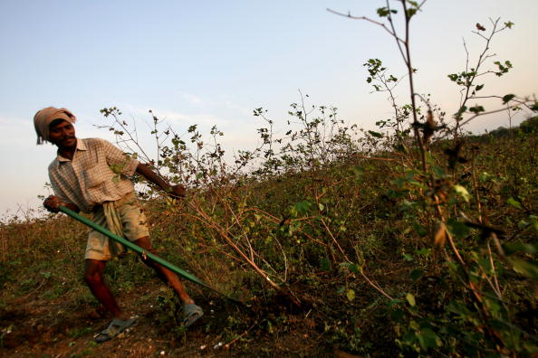 India「Crop Failures Provoke Suicides Amongst Indian Farmers」:写真・画像(15)[壁紙.com]