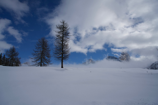 Moody Sky「Italy, Dolomiti, Passo Rolle, paesaggio innevato」:スマホ壁紙(7)