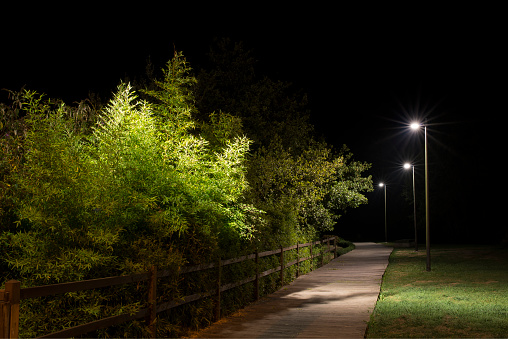 Dark「Spain, Naron, walkway in a park lighted by street lamps at night」:スマホ壁紙(0)