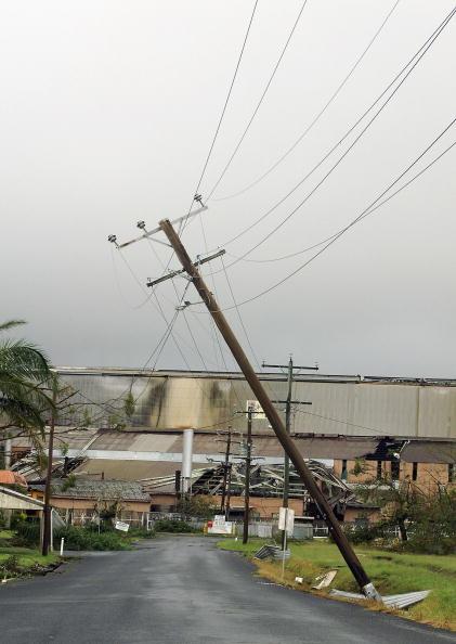 Pole「Aftermath of Cyclone Larry」:写真・画像(11)[壁紙.com]