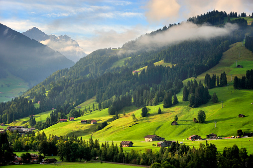 Vaud Canton「Beautiful Valley at Sunrise」:スマホ壁紙(6)
