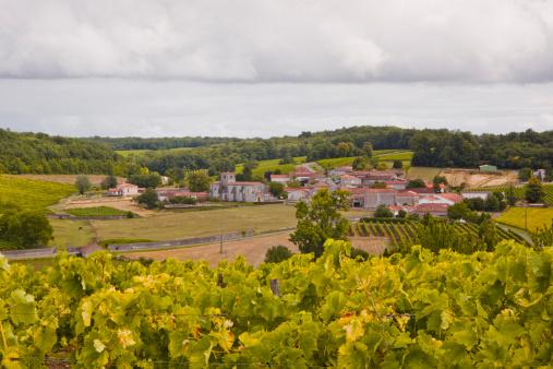 Nouvelle-Aquitaine「The village of Saint Preuil in Cognac.」:スマホ壁紙(19)