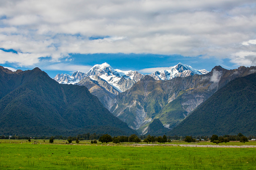 Mt Cook「The scenic Fox Glacier in the background can be seen in the background in the area of New Zealand's famed Lake Matheson.」:スマホ壁紙(16)