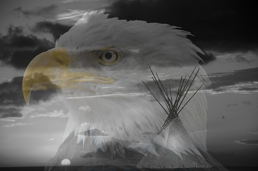 Multiple Exposure「Teepee and Bald Eagle」:スマホ壁紙(0)