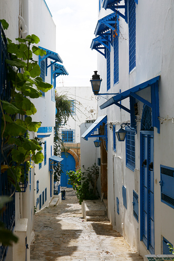 北アフリカ「Tunisia, Sidi Bou Said, traditional residential houses」:スマホ壁紙(11)