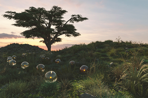 Fairy Tale「Fantasy meadow with glowing glass spheres」:スマホ壁紙(0)