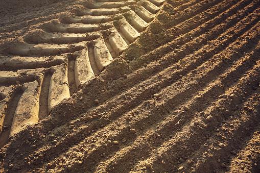 Plowed Field「Tractor tyre track in ploughed field」:スマホ壁紙(8)