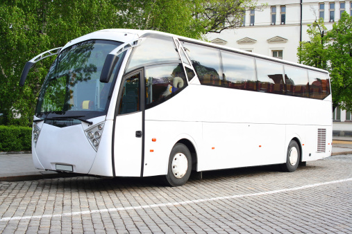Tour Bus「White bus」:スマホ壁紙(18)