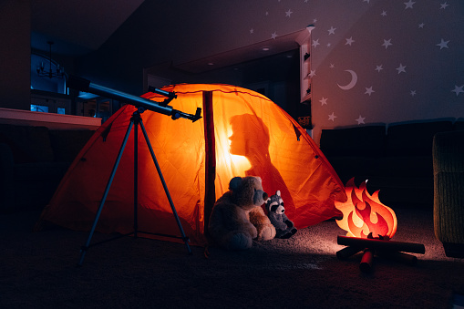 Recreational Pursuit「Boys Inside Tent Camping Indoors」:スマホ壁紙(11)