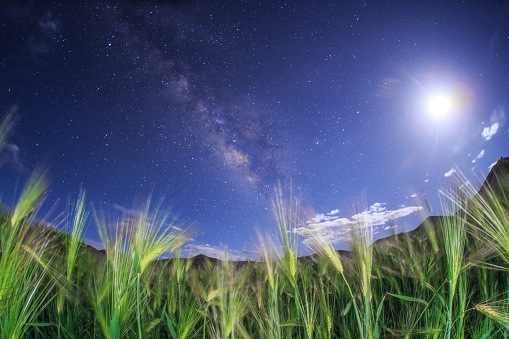 star sky「The Milky Way shines brightly against the waxing moon over a hulless barley field in Tibet, China.」:スマホ壁紙(5)