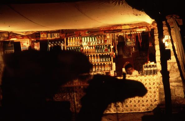 Working Animal「Bedouins」:写真・画像(14)[壁紙.com]