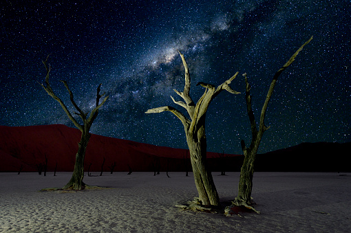 Namibia「Deadvlei and the Milky Way」:スマホ壁紙(18)