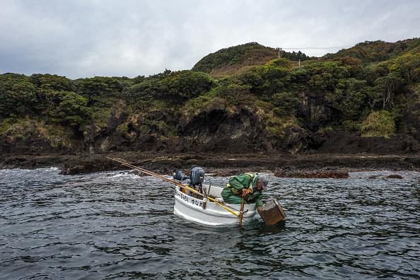 Octopus「The Tub Boat Fishermen Of Sado Island」:写真・画像(19)[壁紙.com]