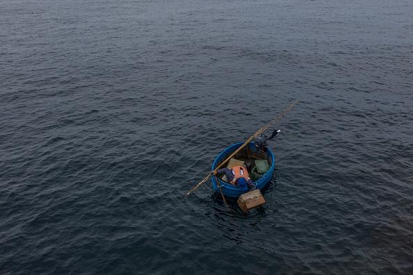 Octopus「The Tub Boat Fishermen Of Sado Island」:写真・画像(18)[壁紙.com]