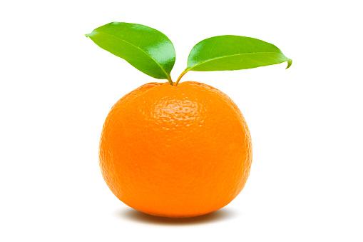 オレンジ色「オレンジ色」:スマホ壁紙(12)