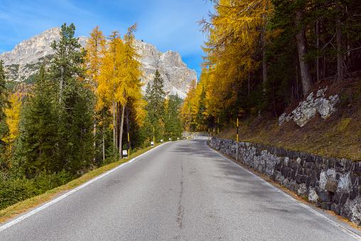 Larch Tree「Mountain Road in autumnal dolomites」:スマホ壁紙(14)