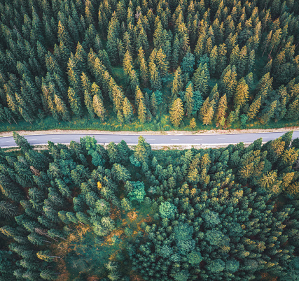 Dividing Line - Road Marking「Mountain Road」:スマホ壁紙(4)