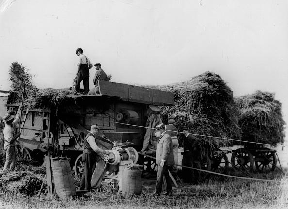 Harvesting「Harvest Threshing」:写真・画像(11)[壁紙.com]