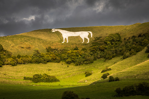 Escarpment「White Horse - Wiltshire」:スマホ壁紙(14)