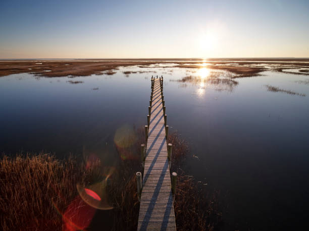 USA, Virginia, Aerial view of Virginia Coast Reserve, pier at sunset:スマホ壁紙(壁紙.com)