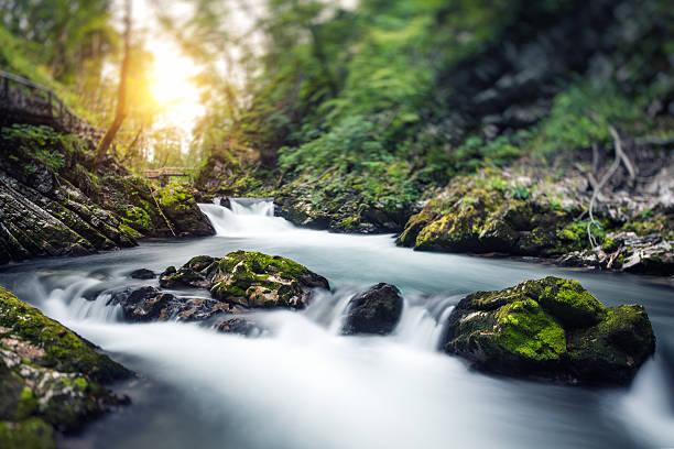 Water Stream:スマホ壁紙(壁紙.com)