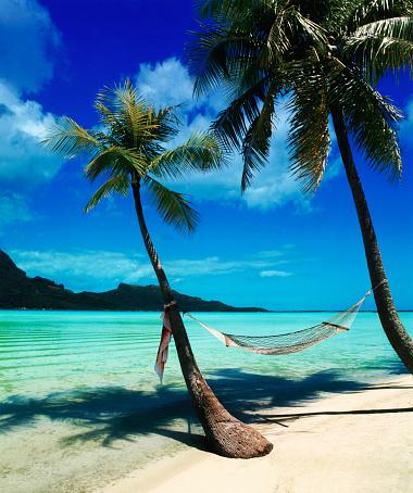 Bora Bora「Hammock Hanging Seaside」:スマホ壁紙(19)