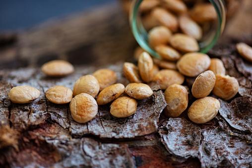 Inca「Superfood Sacha Inchi Nuts」:スマホ壁紙(11)