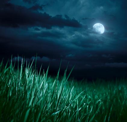 月「Meadow 夜の」:スマホ壁紙(3)