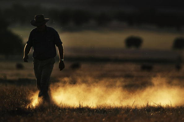 オーストラリア「Australia Endures The Worst Drought On Record」:写真・画像(6)[壁紙.com]