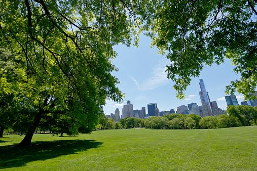 マンハッタン セントラルパーク「Manhattan skyscraper through the fresh green trees」:スマホ壁紙(14)
