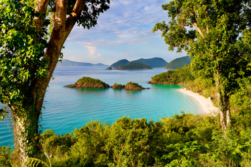St「Trunk Bay, St. John, US Virgin Islands in the Caribbean」:スマホ壁紙(18)