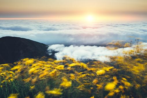 Pico Do Arieiro「Windy Sunrise On Top Of Pico De Arieiro」:スマホ壁紙(9)