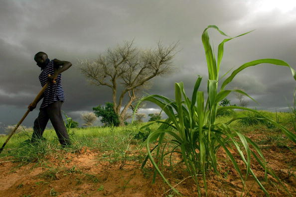 Approaching「Niger Suffers Famine」:写真・画像(2)[壁紙.com]