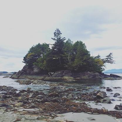 Seaweed「Tiny island」:スマホ壁紙(15)