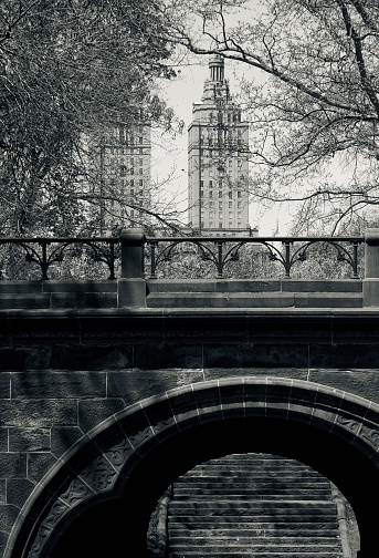 19th Century「An architectural bridge and city view in Central Park」:スマホ壁紙(7)