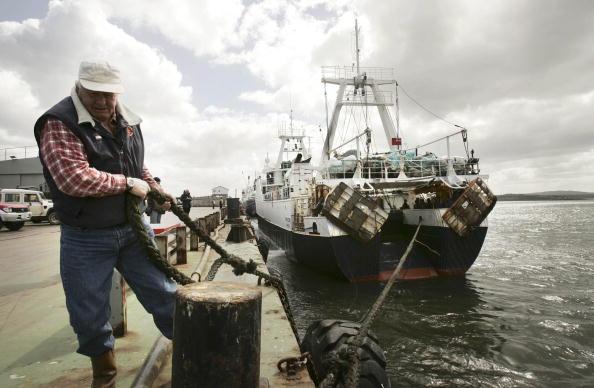 Falkland Islands「Local Economy Flourishes Through Fishing Industry」:写真・画像(9)[壁紙.com]