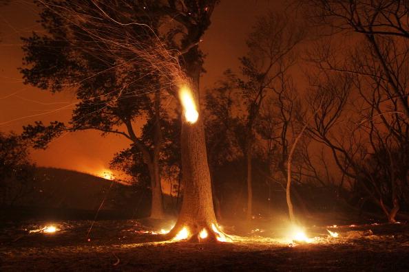 David McNew「Wild Fire Burns Homes In Lake Hughes, California」:写真・画像(17)[壁紙.com]