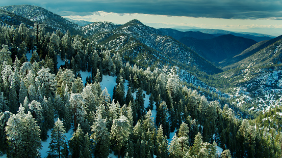 Angeles National Forest「Snow Covered Forest in the San Gabriel Mountains - Aerial」:スマホ壁紙(11)