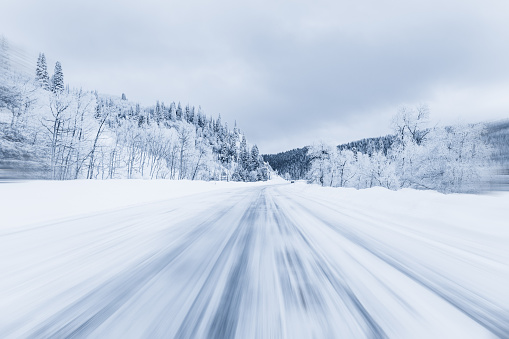 Frozen「Snow covered forest highway, Steamboat Springs, Colorado, america, USA」:スマホ壁紙(17)