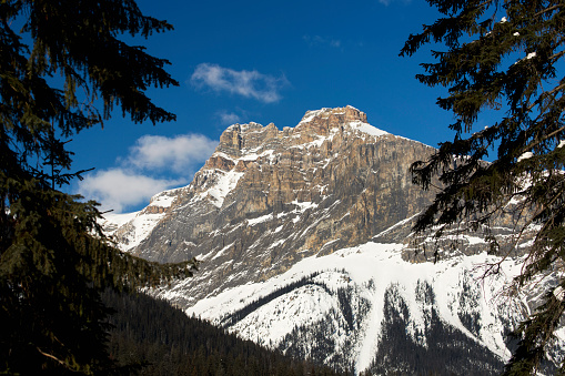 Yoho National Park「Snow covered mountain peak framed between evergreen trees with blue sky and clouds」:スマホ壁紙(10)