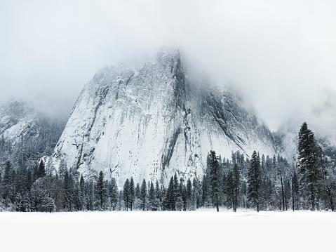 Yosemite National Park「Snow covered scene in Yosemite National Park」:スマホ壁紙(7)