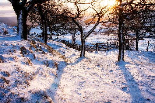 Derbyshire「Snow covered landscape, High Peak, Derbyshire, England, UK」:スマホ壁紙(5)