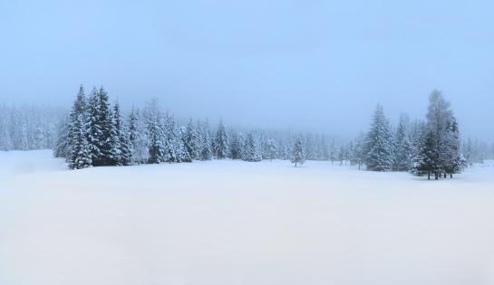トウヒ「雪で覆われた冬のパノラマ」:スマホ壁紙(2)