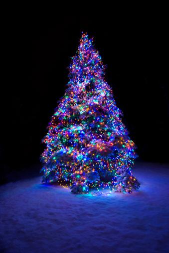 雪が降る「雪をかぶったクリスマスツリーの」:スマホ壁紙(17)