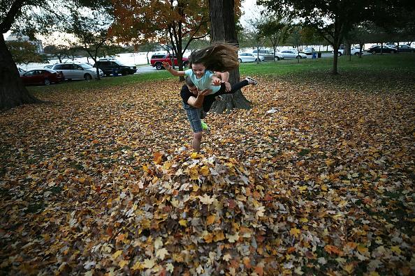 Parent「Warm Spell In November Sends Temperatures Near 80 Degress In D.C.」:写真・画像(8)[壁紙.com]