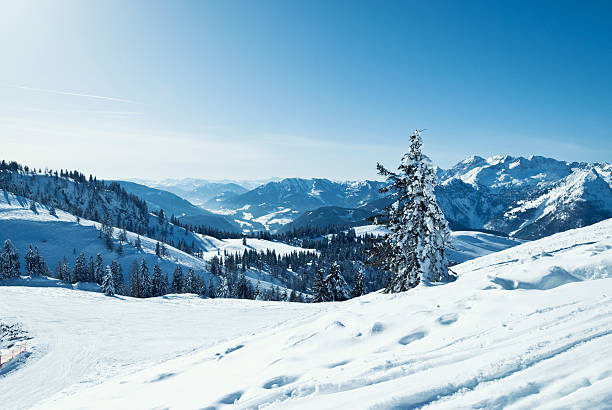 Wonderful winter landscape of the Austrian Alps:スマホ壁紙(壁紙.com)