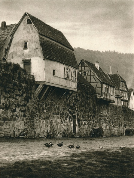 Aquatic Organism「Hirschhorn a. Neckar. Houses on the Town Wall, 1931」:写真・画像(17)[壁紙.com]