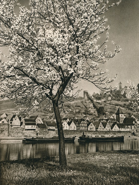 Physical Geography「Hirschhorn a. Neckar, 1931」:写真・画像(10)[壁紙.com]